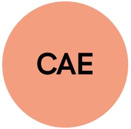 Academia de idiomas en Barcelona. CAE
